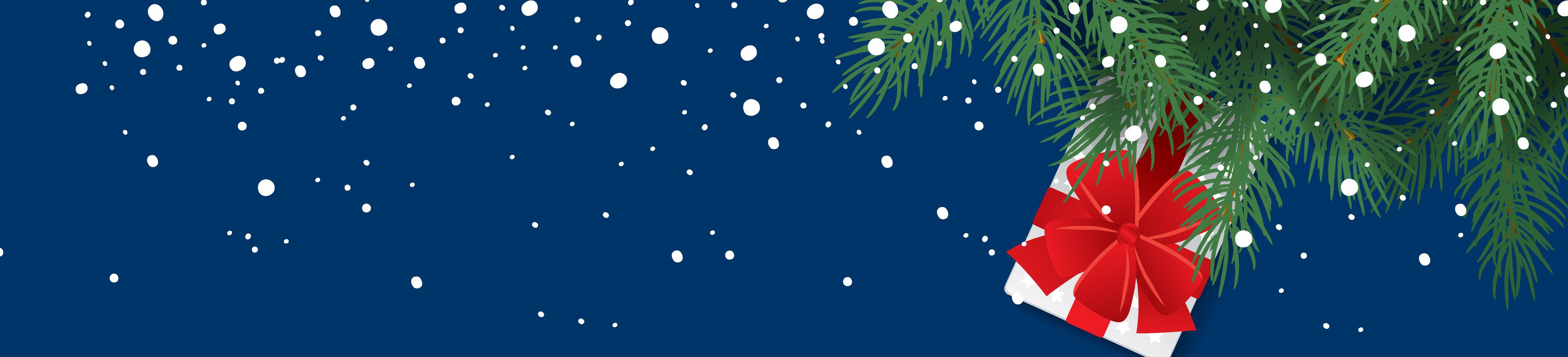 HS_ecommerce_christmas_offer_hero_3840x874.jpg